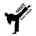 "Dla dzieci w Toruniu: Klub Karate Shotokan ""DOJO TORUŃ"""